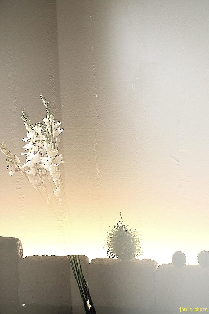 天国への扉~そこのみにて光り輝く_a0158797_2239391.jpg