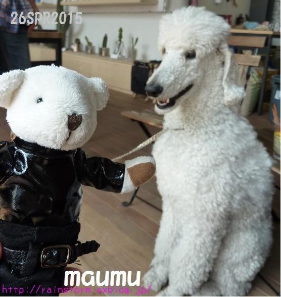 Rain ソウル 残り香 maumuさんからのお土産_c0047605_1041779.jpg
