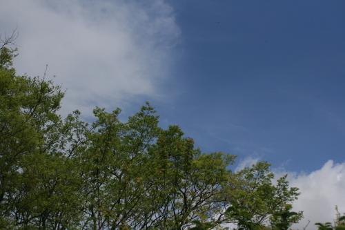 風が強いですね_e0179508_13395803.jpg