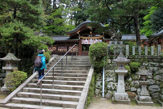 鷺森神社 新緑_e0048413_18545199.jpg