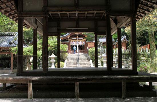 鷺森神社 新緑_e0048413_1855025.jpg