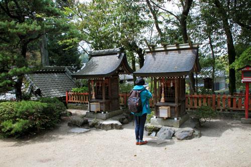 鷺森神社 新緑_e0048413_18551087.jpg