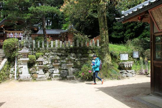 鷺森神社 新緑_e0048413_18552172.jpg