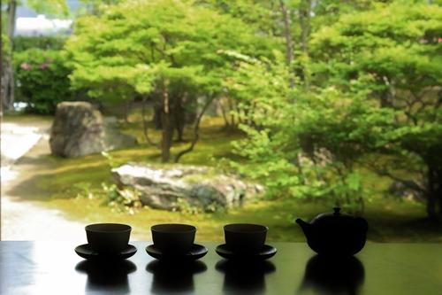 喜楽亭で楽しむ おいしい日本茶_b0220318_1134221.jpg