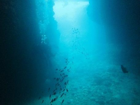 今日はガラガラ青の洞窟!!_a0156273_16541699.jpg
