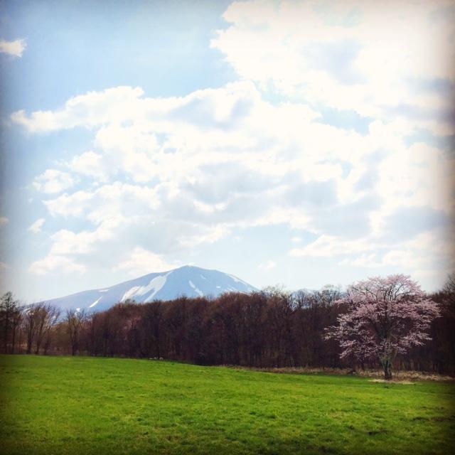 【ほんとうの春を待つための12章】〜最終章〜_d0028589_916533.jpg