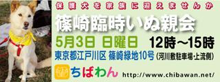 4/28センターレポート パート2          ⑭_f0078320_22581036.jpg