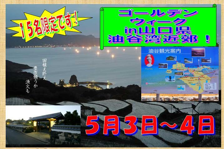 GW楽しみ~!ですやん!_f0056935_1045333.jpg