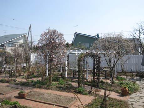 綺麗になって来たお庭で初ブランチ_a0279743_723632.jpg