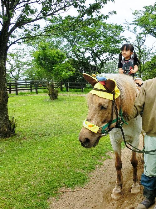 マザー牧場♡ 得意げに乗馬体験〜_d0224894_1215311.jpg