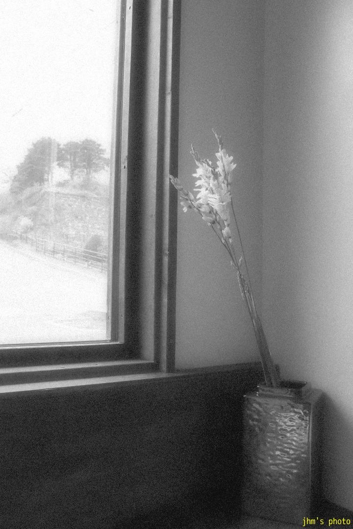 カフェの静けさ_a0158797_1054196.jpg