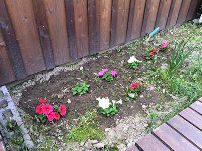 花壇をいじる_f0309404_1018413.jpg