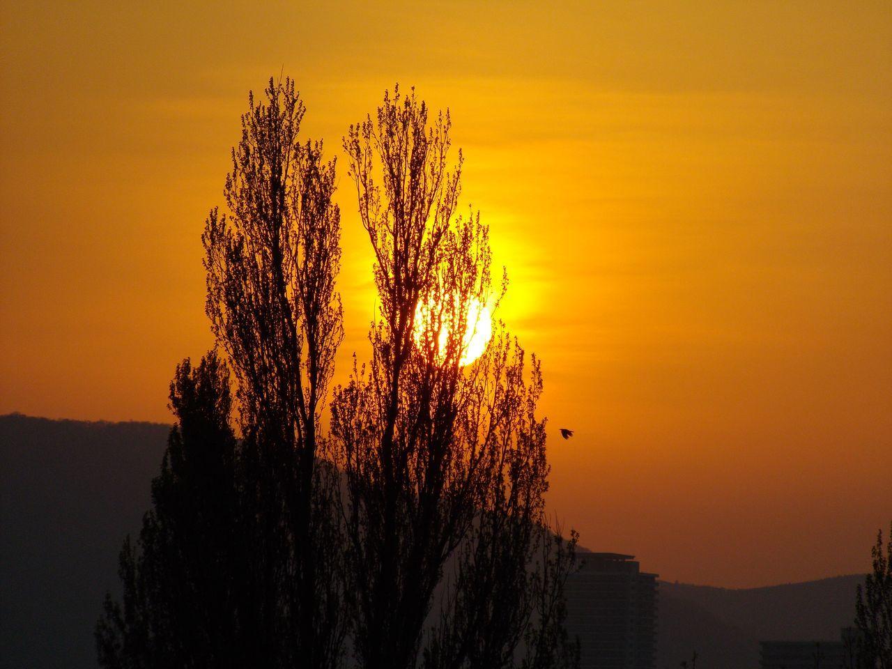 札幌らしい春の一日か_c0025115_20261829.jpg