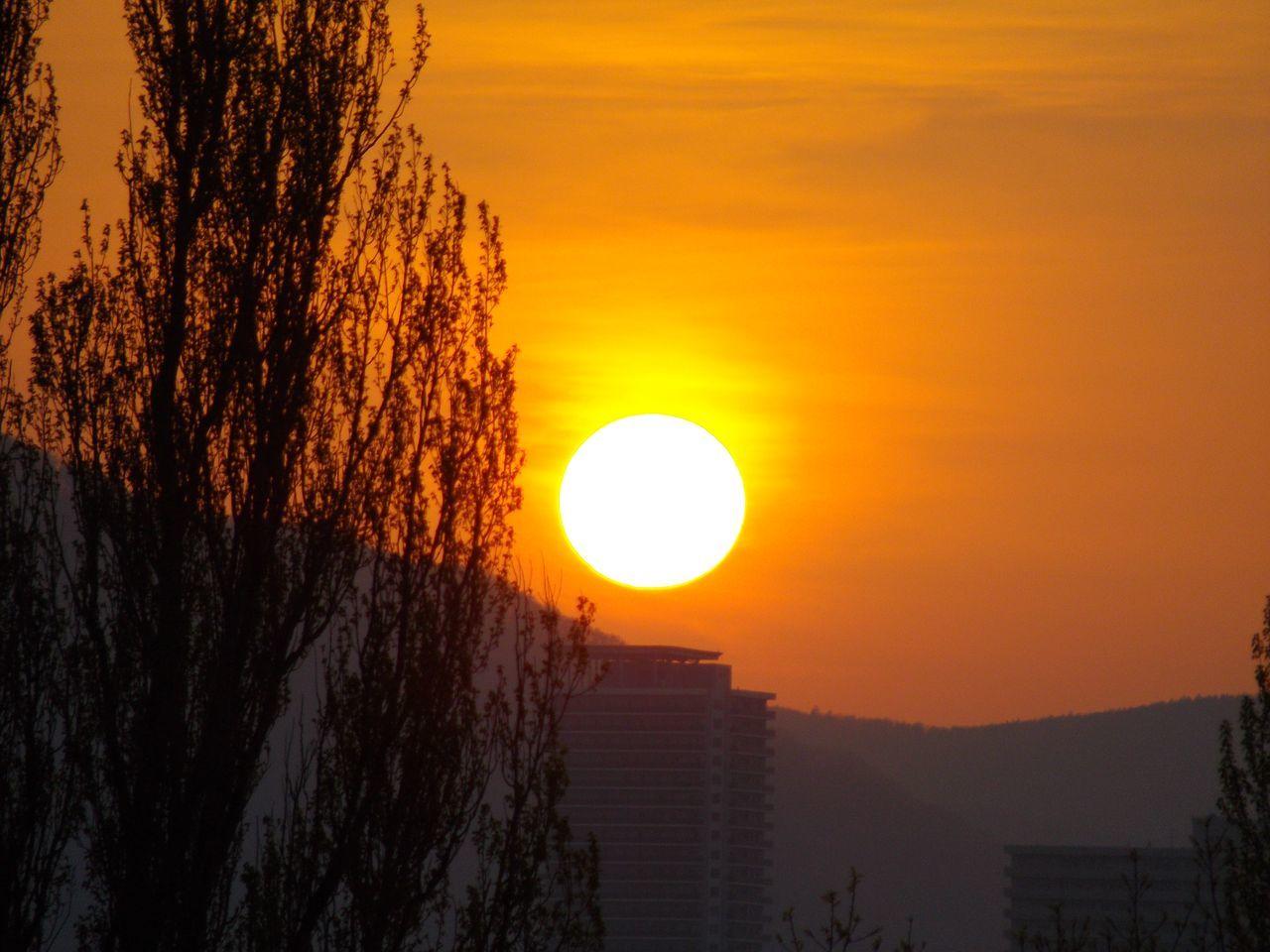 札幌らしい春の一日か_c0025115_20262241.jpg