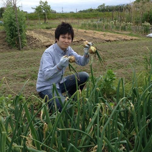 初夏の収穫です_e0154524_20215029.jpg