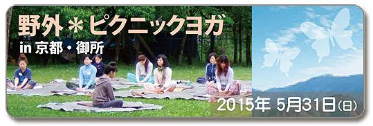 青空の下でリラックス!野外*ピクニックヨガ in 京都_f0086825_1811760.jpg