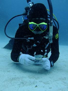 意外と水中で映えるカラー_b0124144_10515029.jpg