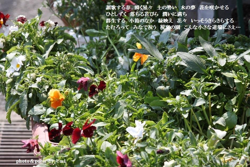 f0351844_15305614.jpg