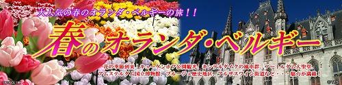 b0097689_229669.jpg