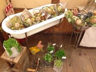 『アンティークと花と洋服』に出店しました。_e0268298_17475174.jpg