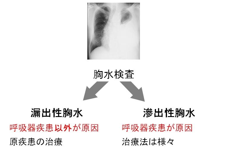 胸水pleural effusion_c0367011_10134791.jpg