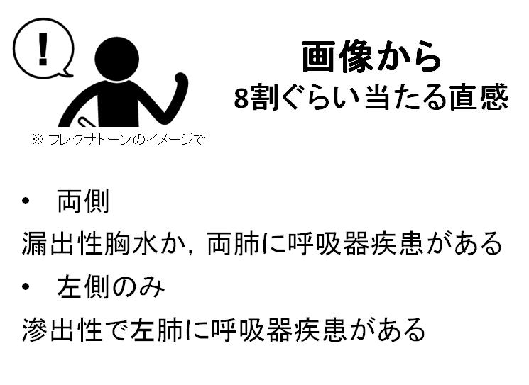 胸水pleural effusion_c0367011_10135015.jpg