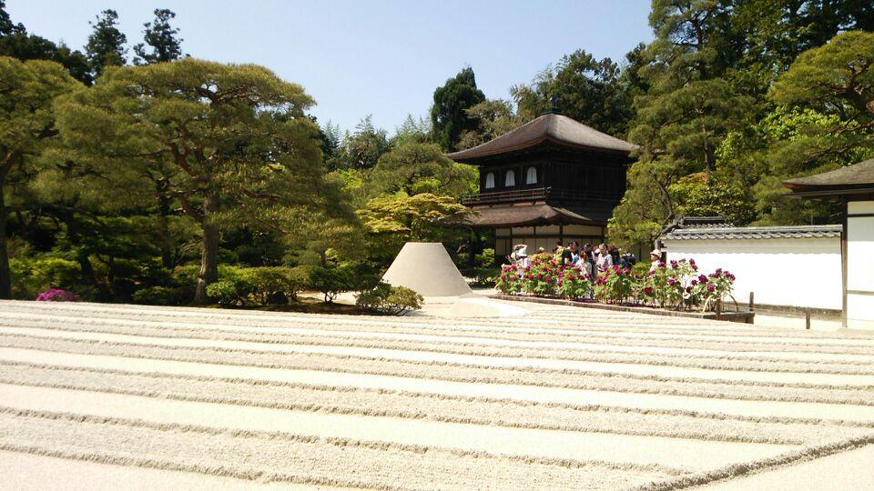 新緑の京都_a0112220_8371323.jpg