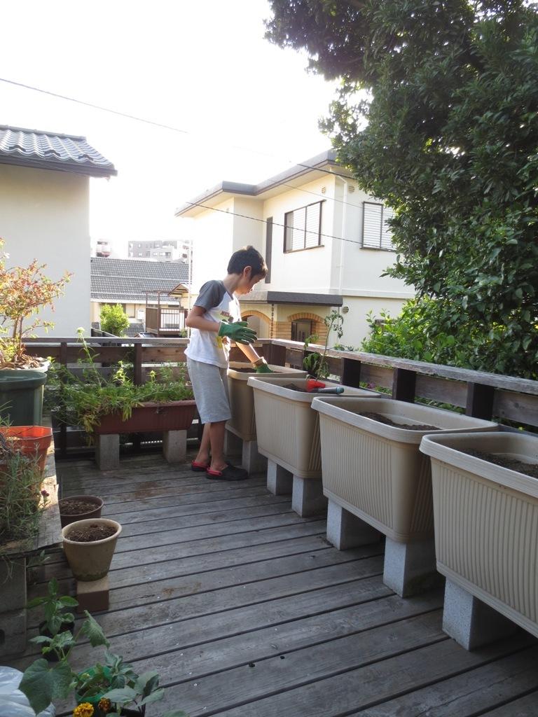 夏野菜の植え付け_c0310571_23080470.jpg