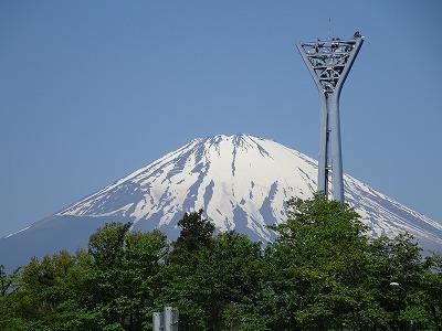 ようこそチーム富士宮に・・マリン&アンジュ(写真追加あり)_e0222588_18441580.jpg