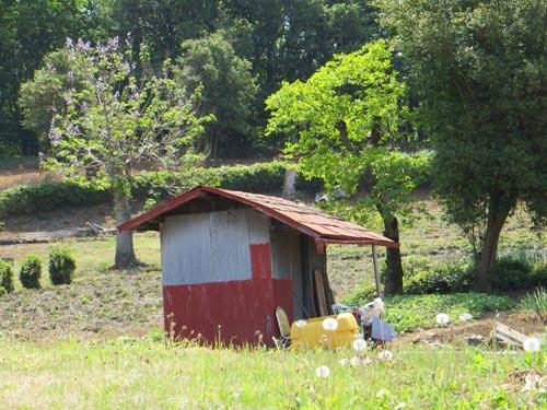 体験教室と狭山丘陵_b0129807_2121718.jpg