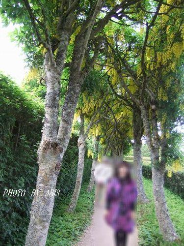 f0295238_15015454.jpg