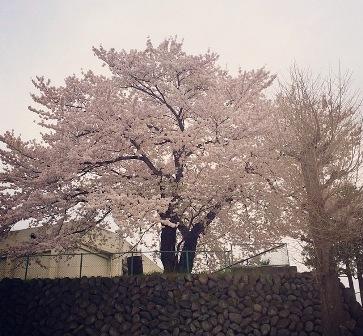 ①.5月のエネルギー&日本三大名湯 草津温泉_b0173754_16390063.jpg