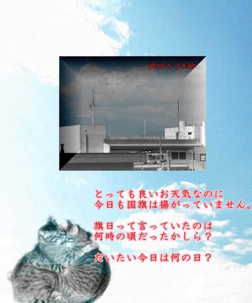 b0078675_105691.jpg