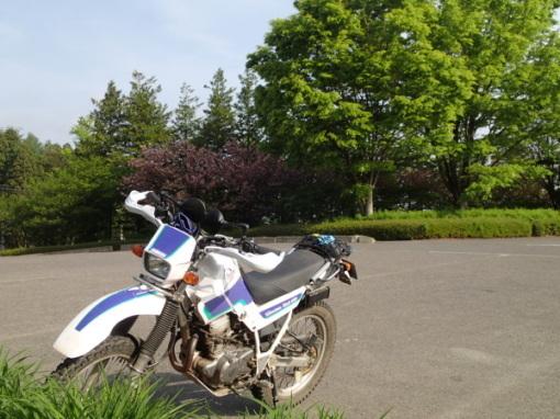 yoshidonさんの新緑林道ツー_a0279883_18492421.jpg