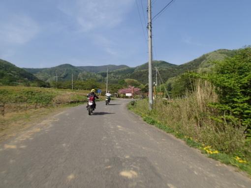 yoshidonさんの新緑林道ツー_a0279883_18501726.jpg