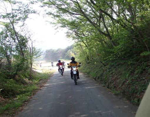 yoshidonさんの新緑林道ツー_a0279883_18503102.jpg
