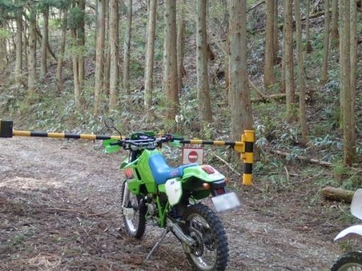 yoshidonさんの新緑林道ツー_a0279883_18505533.jpg