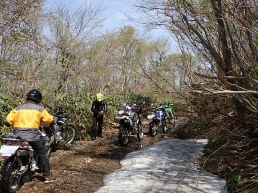 yoshidonさんの新緑林道ツー_a0279883_21021426.jpg