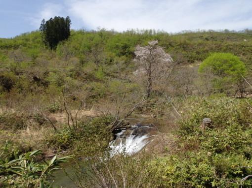 yoshidonさんの新緑林道ツー_a0279883_21191574.jpg