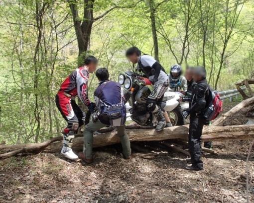 yoshidonさんの新緑林道ツー_a0279883_21313394.jpg