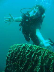 今日はみんなでピピ島ダイビング!!_f0144385_23340275.jpg