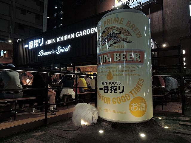 お散歩_c0062832_7431976.jpg