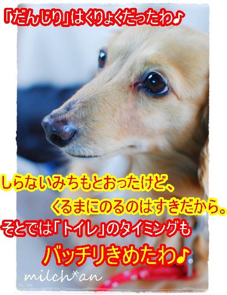 b0115642_17445511.jpg