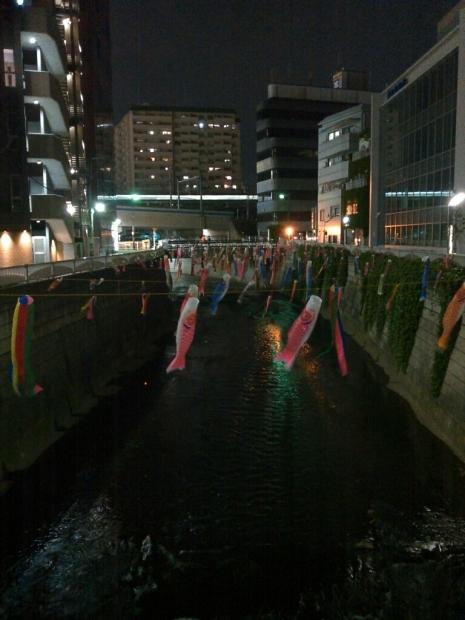 神田川の鯉のぼり・・・なんだけど_c0162773_11330272.jpg
