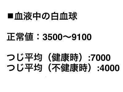 f0308281_13254155.jpg