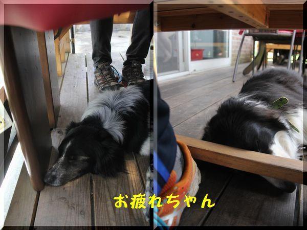 d0224111_20112132.jpg