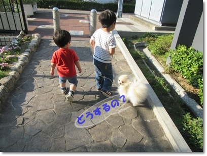 b0167519_20253245.jpg