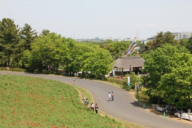 【昭和記念公園】part 2_f0348831_07403042.jpg