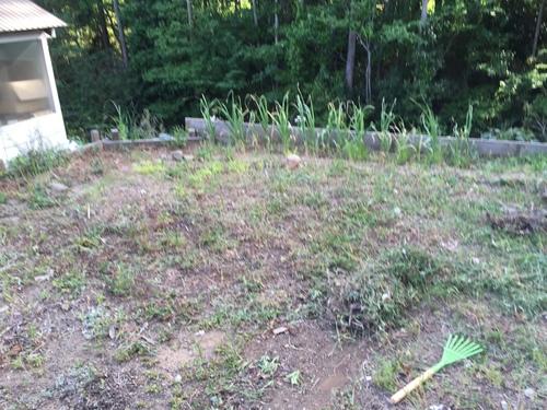 お庭にバーベキューコンロ 作ってみた_c0331145_23412978.jpg