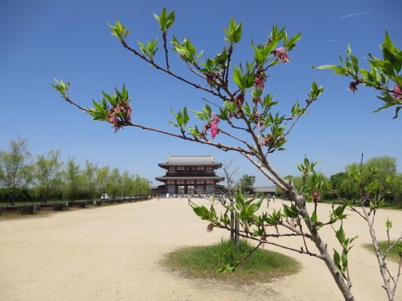 平城京天平祭に行ってきたよ_c0001670_17322198.jpg